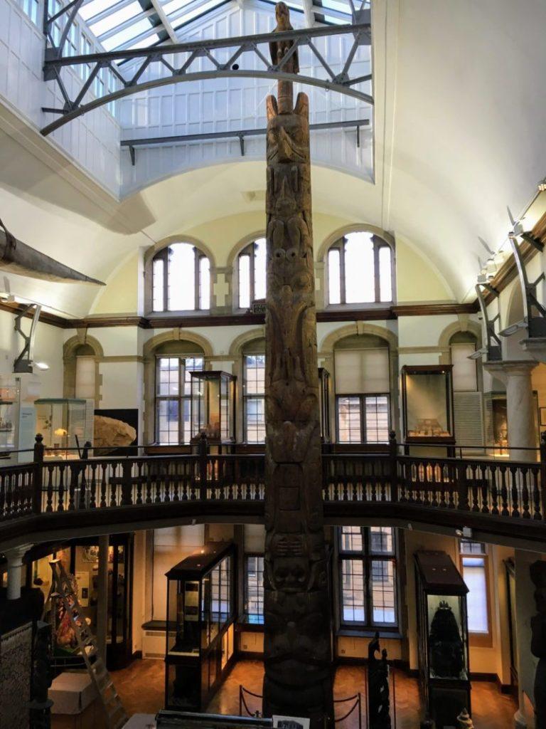 動物学博物館の内部