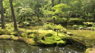 西芳寺 苔寺の庭園