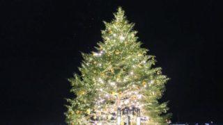 横浜赤レンガ倉庫のクリスマスツリー