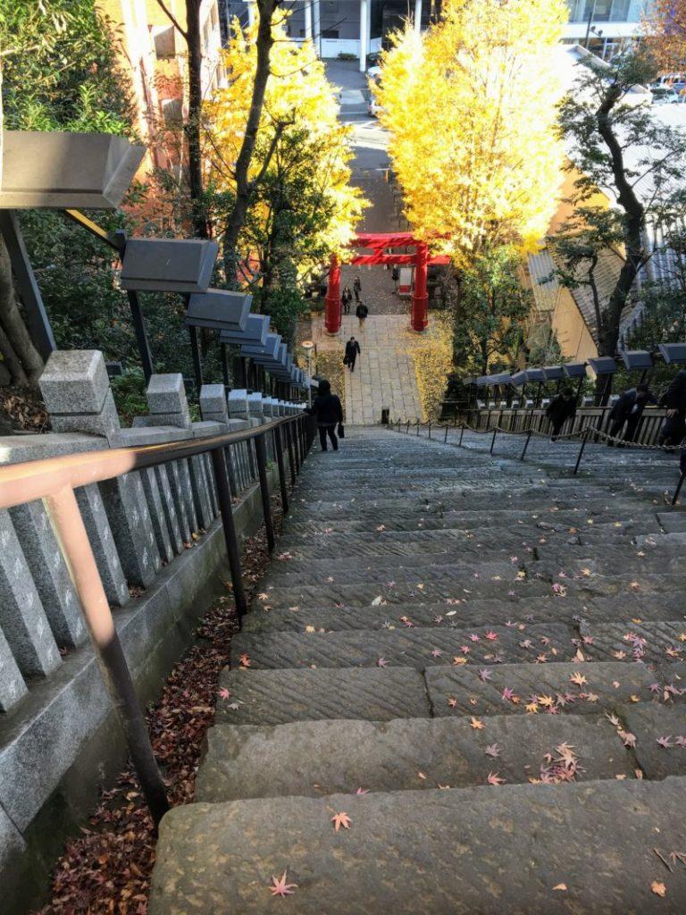 上から見る出世の石段(男坂)