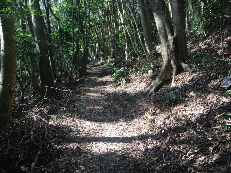 石岳展望台への徒歩道