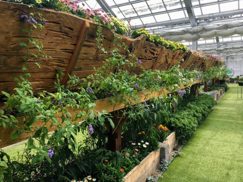 ハーブ庭園 旅日記 富士河口湖庭園の温室