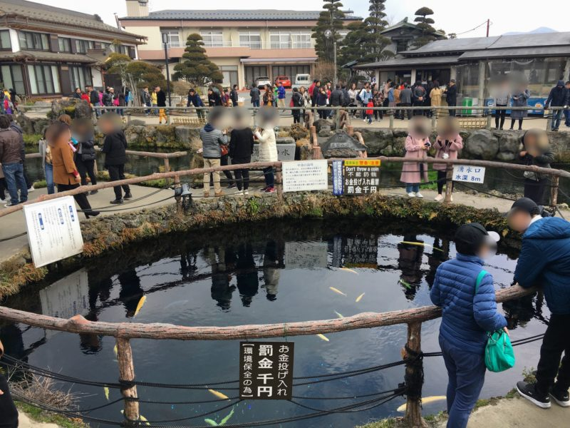 日本名水百選地の中池