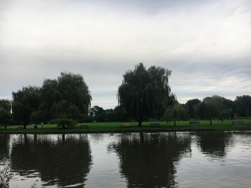 アポン川(River Avon)沿い